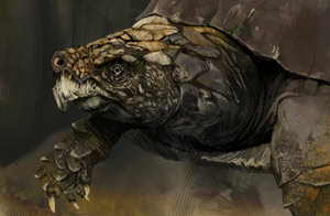 Colored version of the turtle